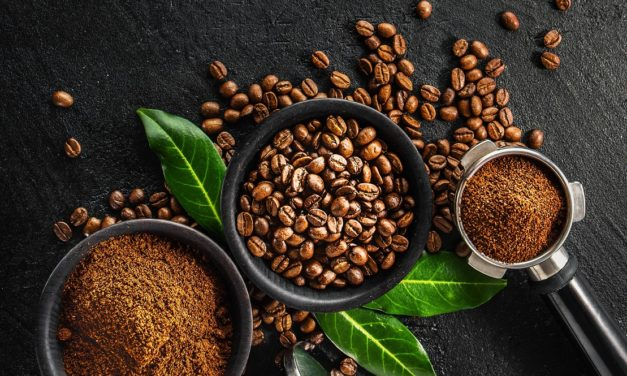 Meilleur Café en Grain